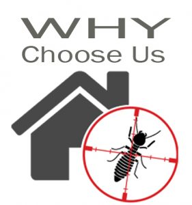 why-us-termite-control-gurgaon