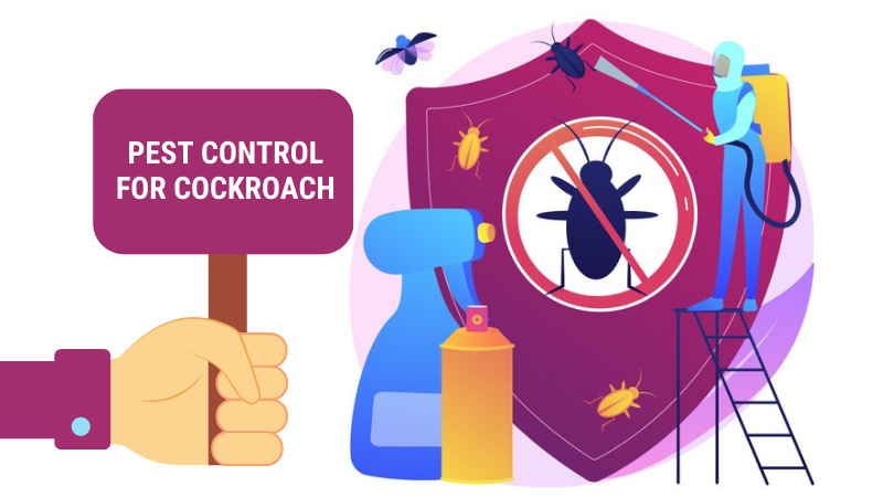 Ways to Pest Control for Cockroach Infestation in Best Possible Manner